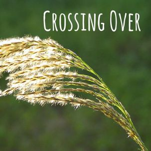 crossing over.jpg